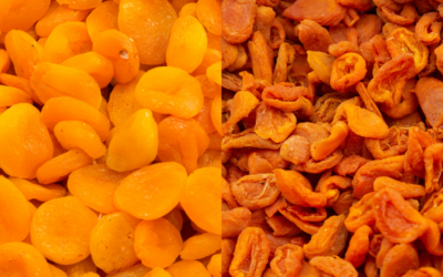 differences between Turkish and California apricots