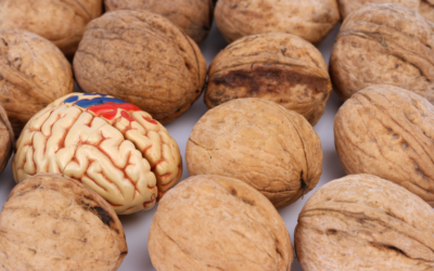 top 6 nuts and seeds for brain health