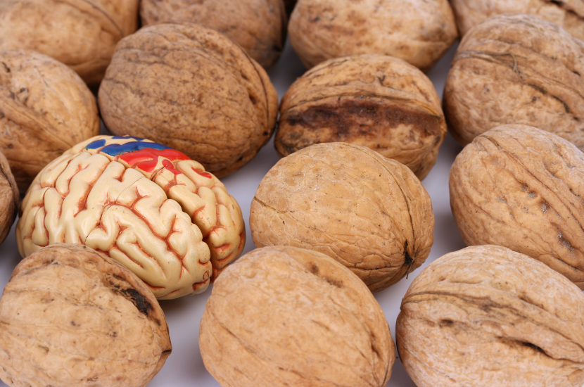 6 Best Nuts And Seeds For Brain Health