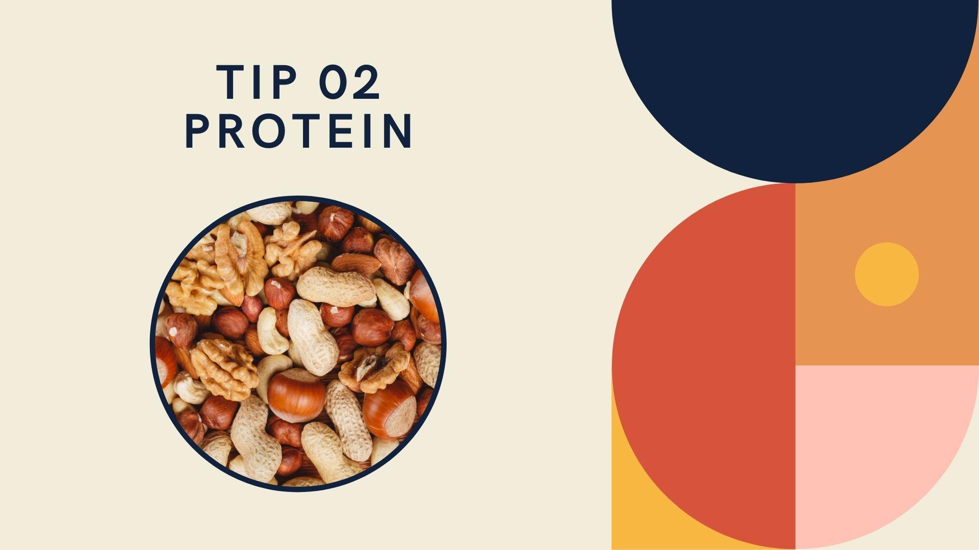 tip 2 protein