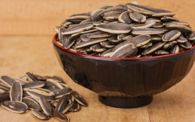 Sunflower Seed Recipes For Any Occasion