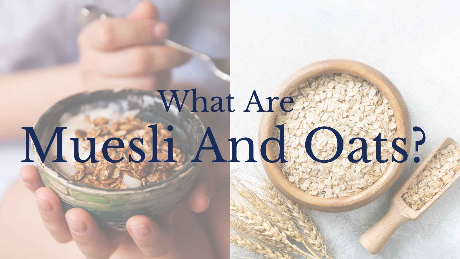 what are muesli and oats